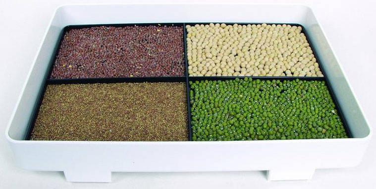 Lexen Healthy Sprouter daigyklos sistema